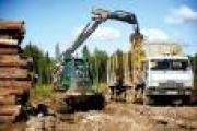 Инвестиции в лесную отрасль Поморья в 2014 году составили семь миллиардов рублей — Экономика — Новости Архангельска