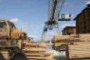 Областной профсоюз лесников выступил за объединение работодателей ЛПК — Экономика — Новости Архангельска